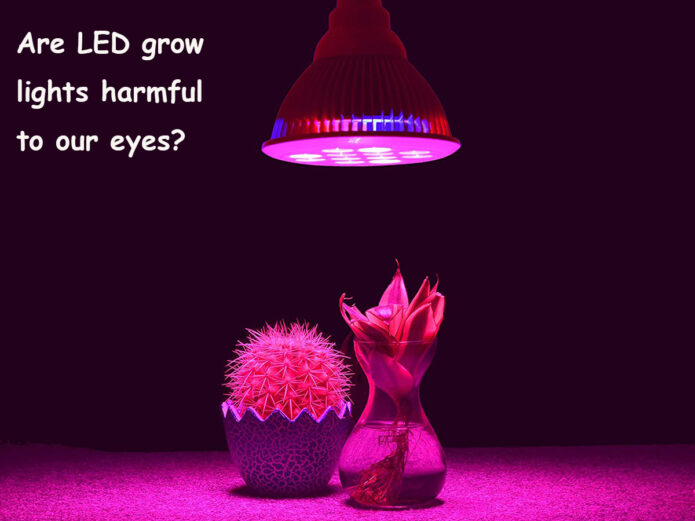 Are LED grow lights harmful to our eyes?